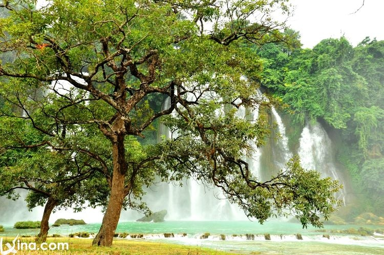 vietnam photos - most beautiful waterfalls in vietnam