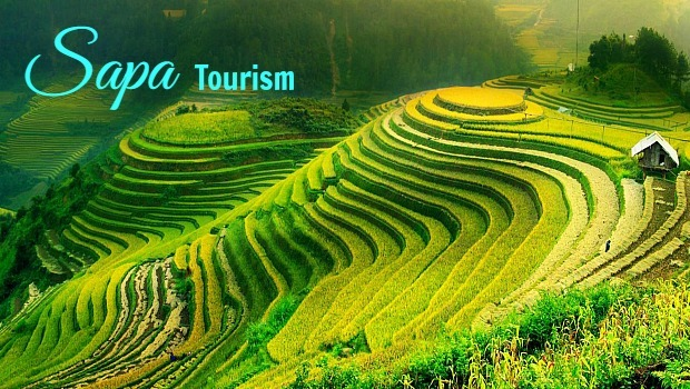 Sapa Tourism – A Handbook From A To Z For Tourists