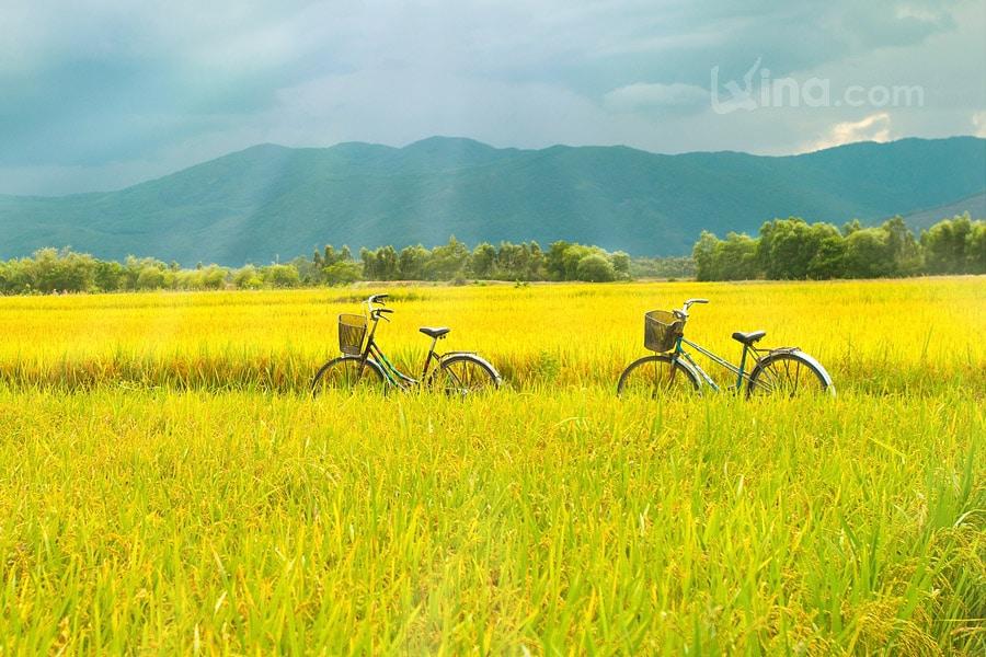 Landscape of Binh Dinh