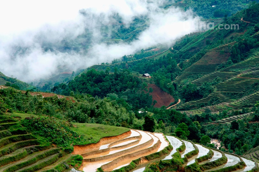 Landscape of Sapa