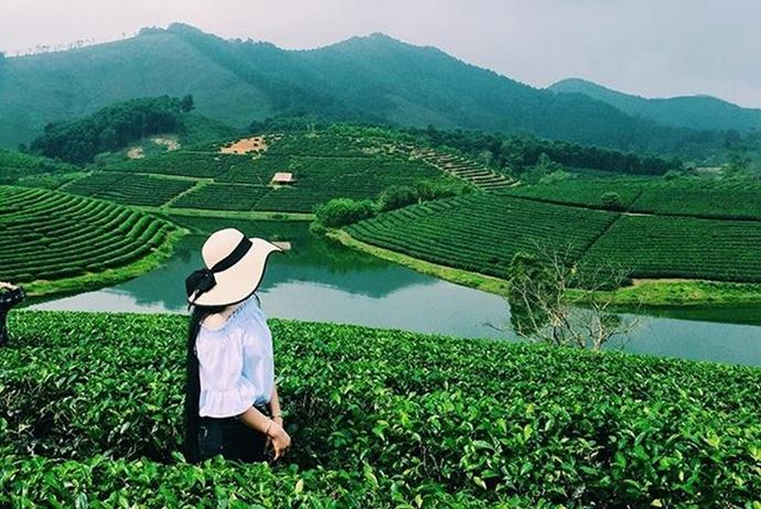 mu cang chai golden rice fields - che cu nha commune