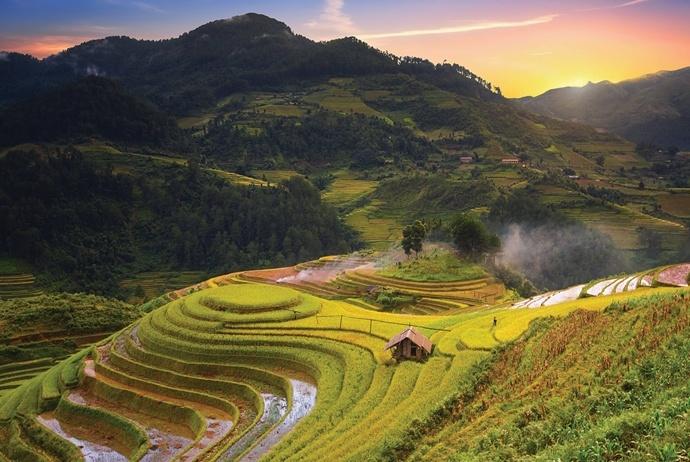 mu cang chai golden rice fields - tu le valley