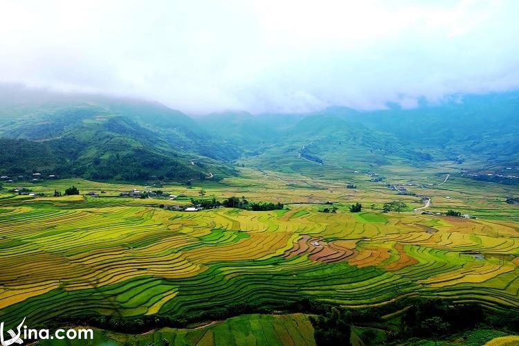 vietnam photos - mu cang chai golden rice fields