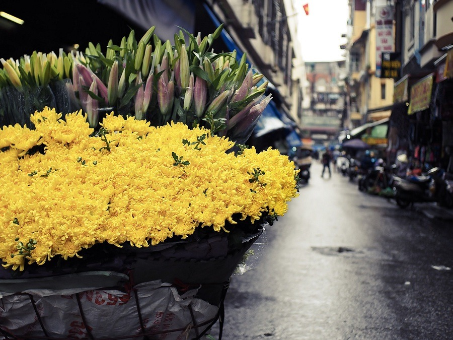 street hawkers in hanoi - the image of a peddler with a bicycle full of flowers