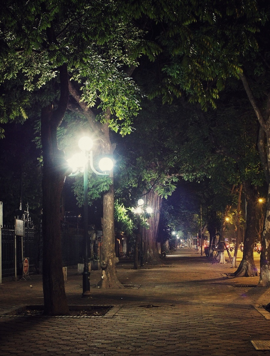 autumn in hanoi - the street lights