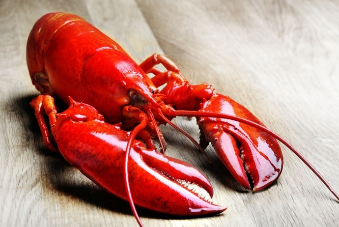 what to eat in binh hung island - lobster
