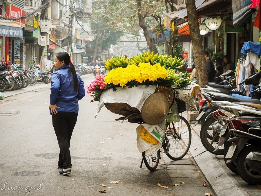 street hawkers in hanoi - yellow daisy and lily