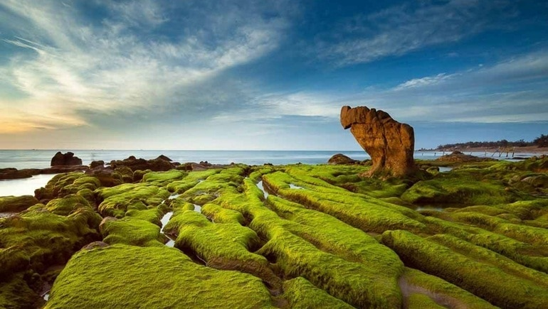 Co Thach Beach – The Legendary Land In Phan Thiet, Vietnam