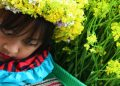 ha giang in spring photos - children