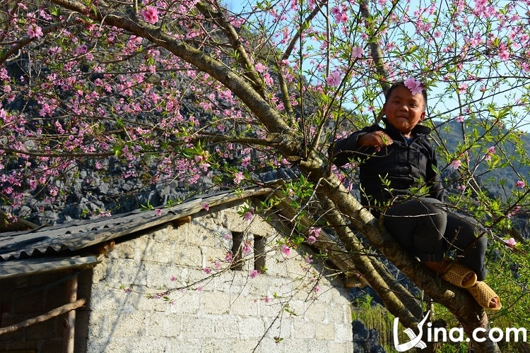 ha giang in spring - thang 3