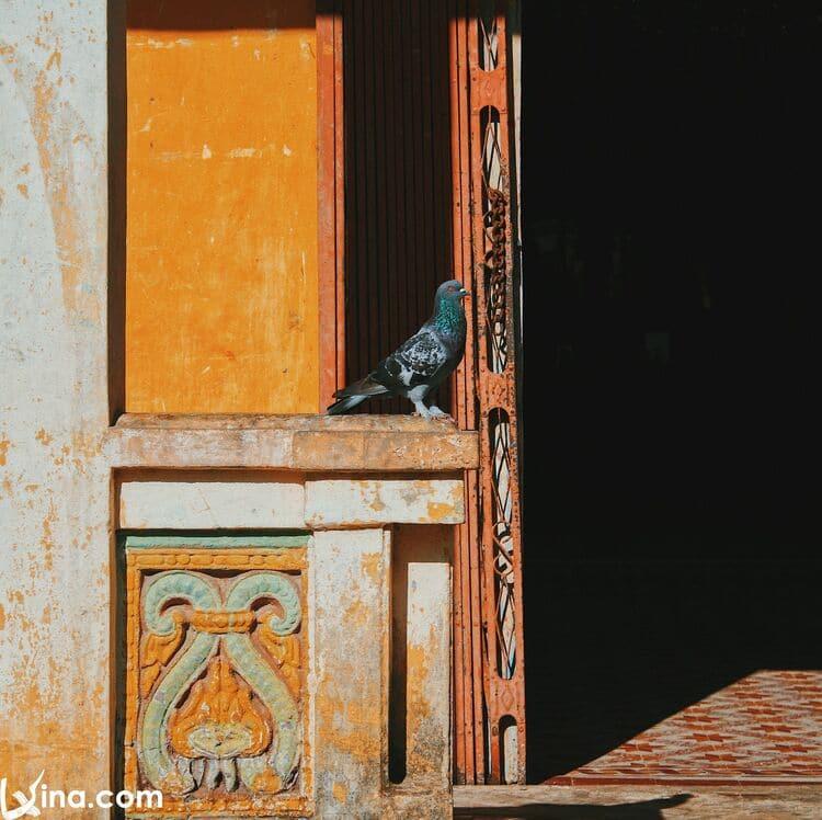 vietnam photos - photos of colorful khmer pagodas