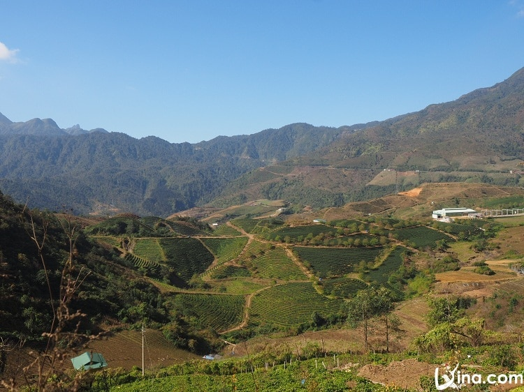 sapa in winter - gorgeous landscapes