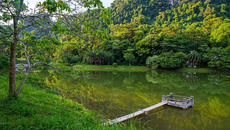 cuc phuong national park - things to see in cuc phuong national park in Vietnam