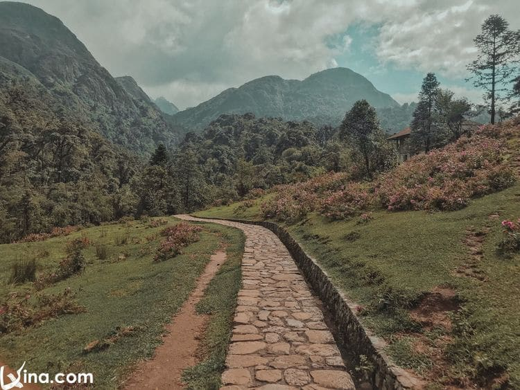 vietnam photos - beautiful photos of sapa landscapes