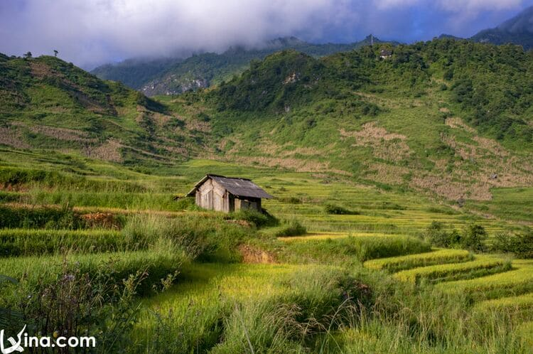 vietnam photos - the beauty of y ty