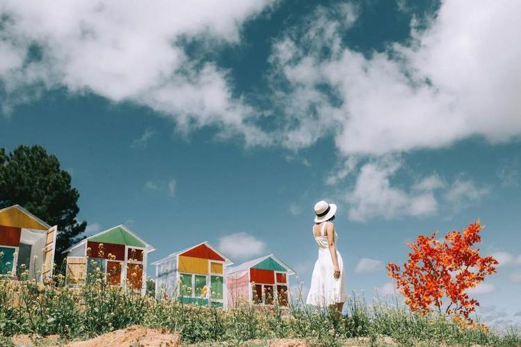 vietnam photos - da lat sunny farm