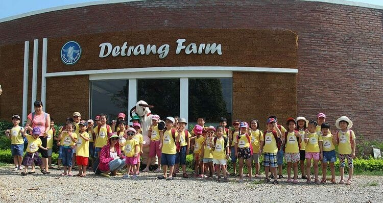 Detrang Farm In Hanoi: Best Educational Farm In Vietnam