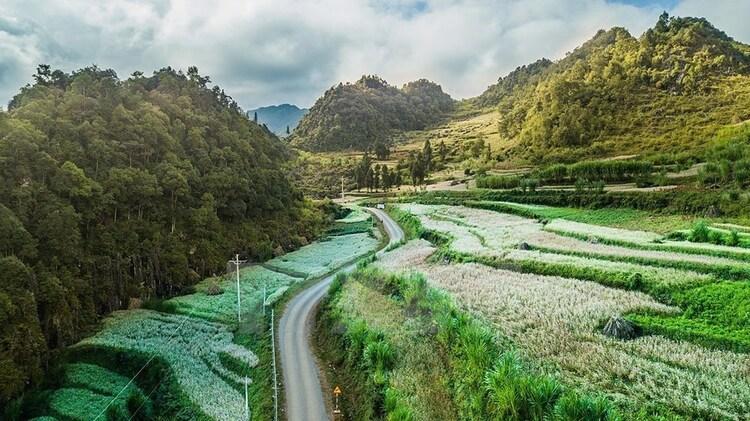 vietnam photos - sung la valley