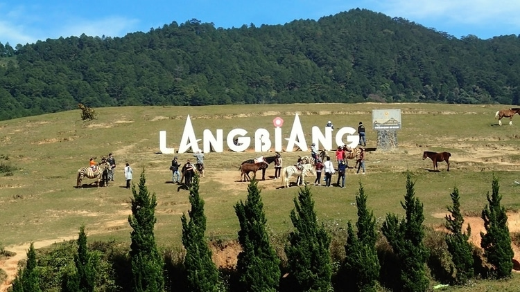 Lang Biang Mountain In Da Lat, Vietnam – A Magnificent Beauty & Soulful Legend