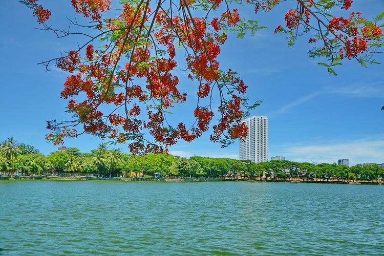 29/3 Park – The Relaxing Attraction In Da Nang, Vietnam