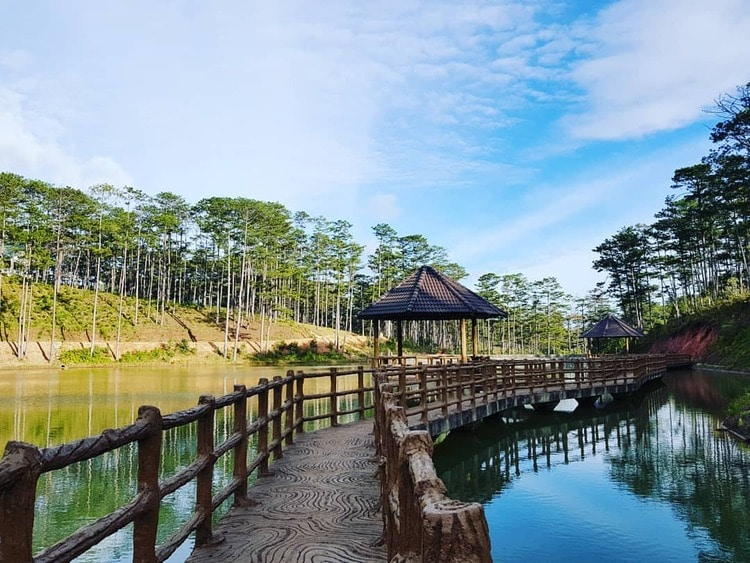 Bidoup Nui Ba National Park – Great Destination In Da Lat, Vietnam