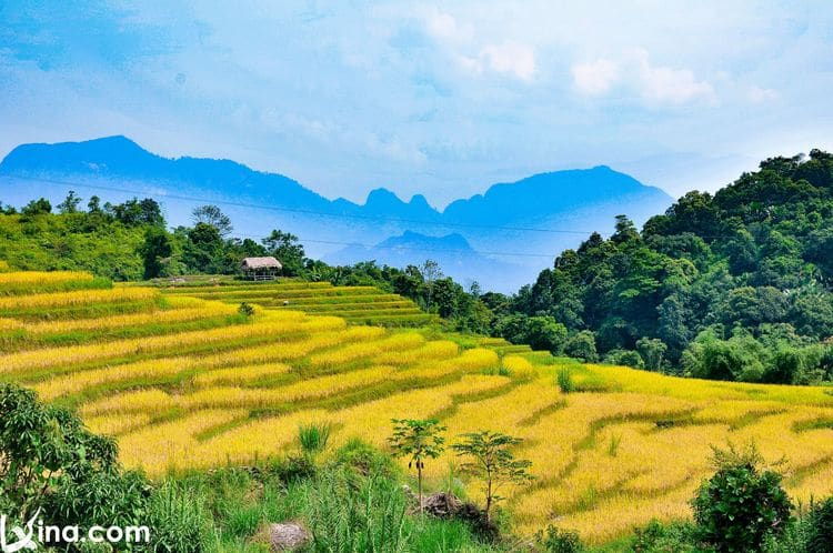 Khuoi My Village Photos: Discover Ha Giang's Countryside, Vietnam