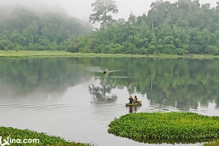 vietnam photos  - nam cat tien national park photos