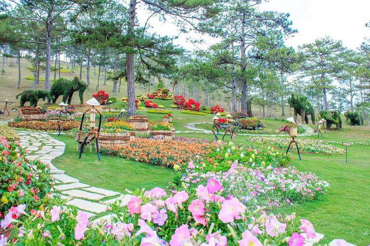 vietnam photos - dalat flower garden