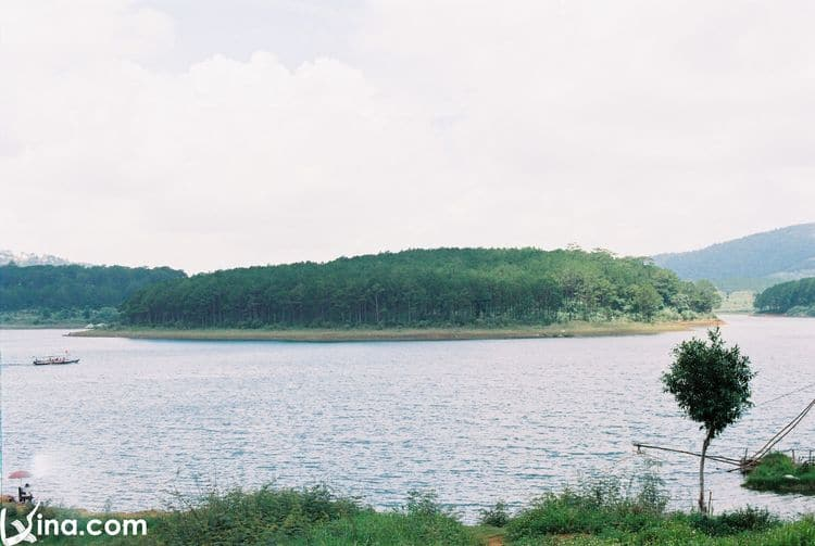 Golden Stream Lake: A Famous Landmark In Da Lat, Vietnam
