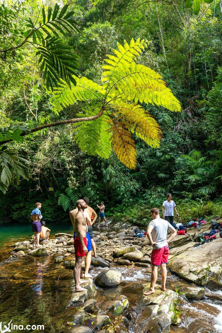 vietnam photos - bach ma national park photos