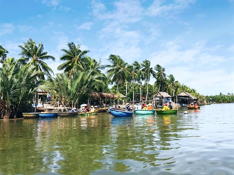 vietnam photos - bay mau coconut forest