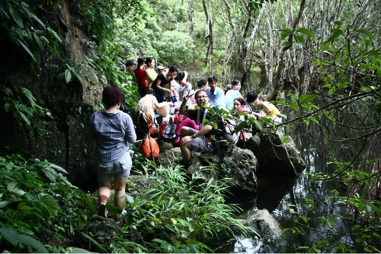 vietnam photos - cat ba national park