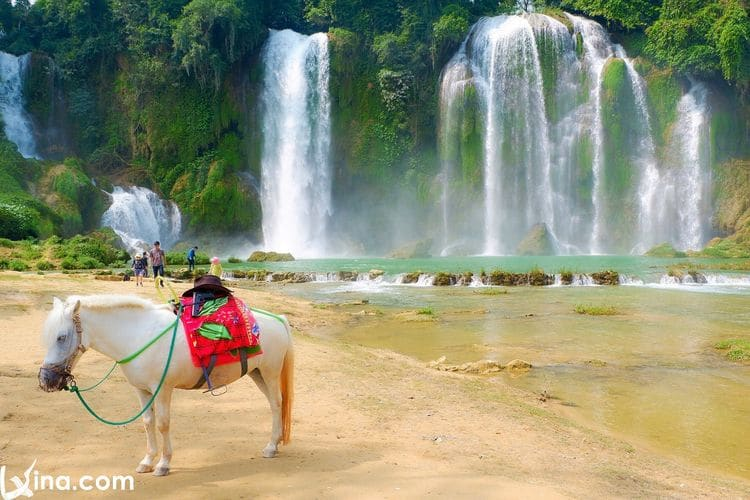 17 Most Beautiful Waterfalls In Vietnam From North To South