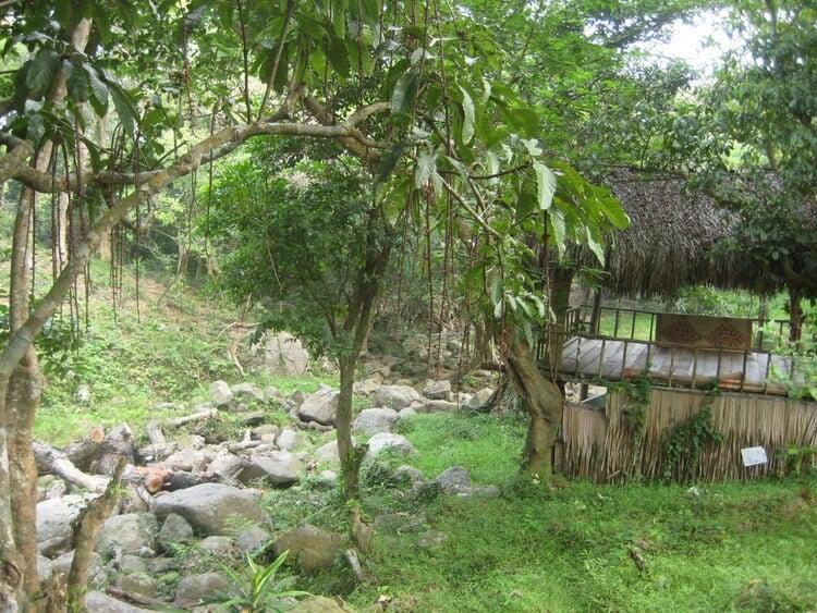 vietnam photos - nhat lam thuy trang tra