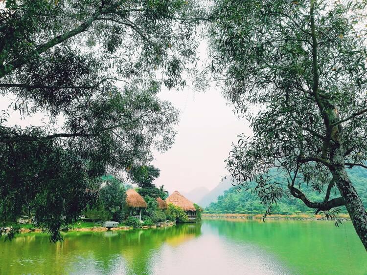 thung nham bird garden ninh binh