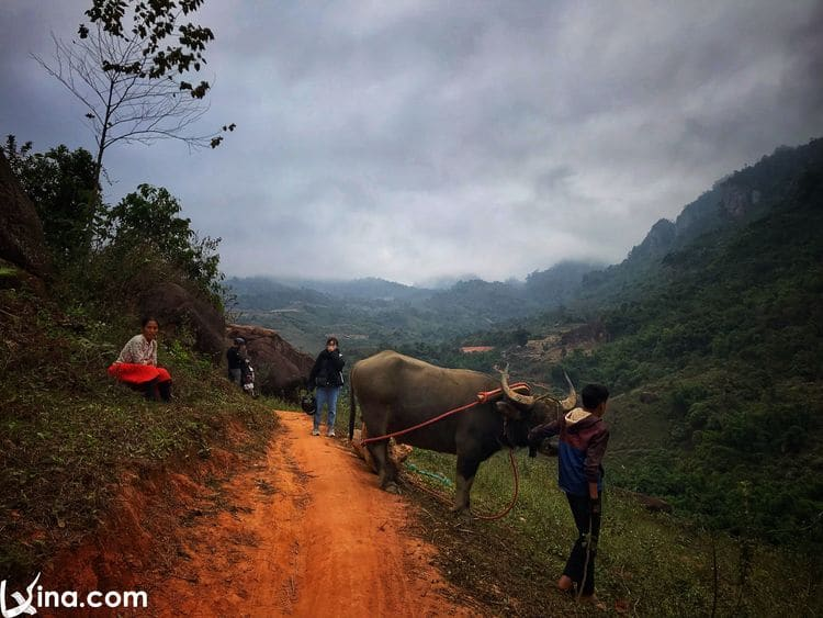 vietnam photos - moc chau photos