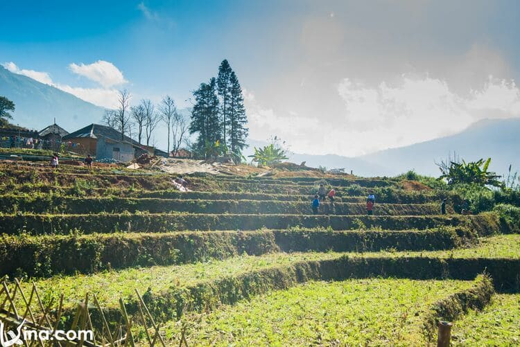 vietnam photos - landscape photos of y ty