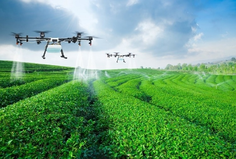 High-Tech Contribution To Vietnamese Agriculture Sector